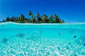 Получение визы на Мальдивы
